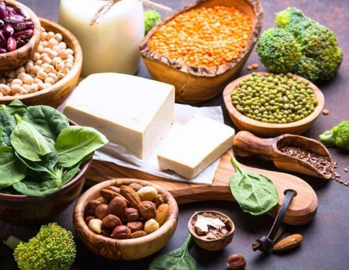 Différents aliments de protéines végétales